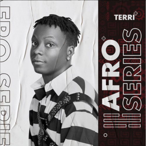 "Terri – ""AfroSeries Review"", This Project Didn't Meet Up With Our Huge Expectations…"